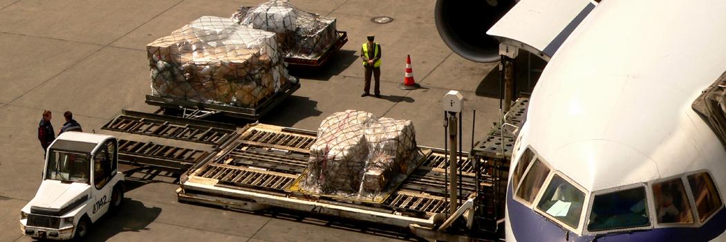 Island Cargo Support